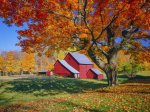 The Best of NEW ENGLAND in the Fall